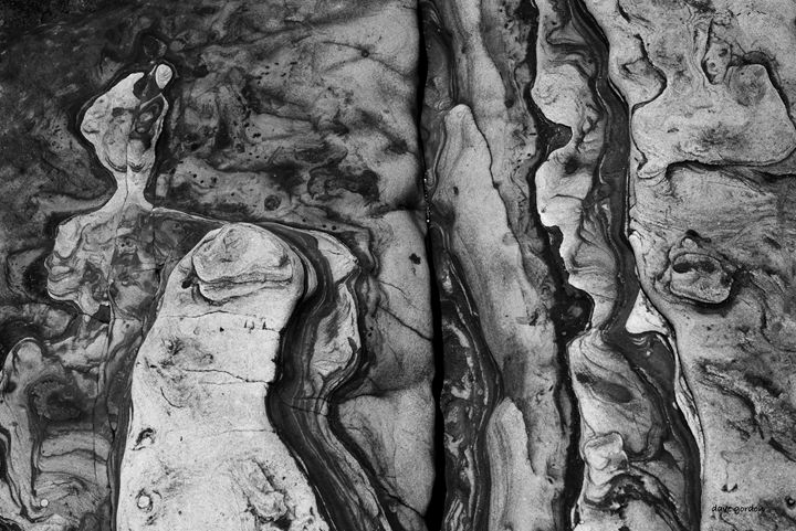 Point Lobos II BW - Dave Gordon Arts