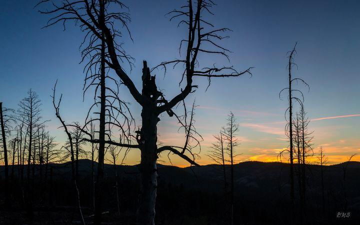 Bryce Canyon NP IX Sunset Color - Dave Gordon Arts