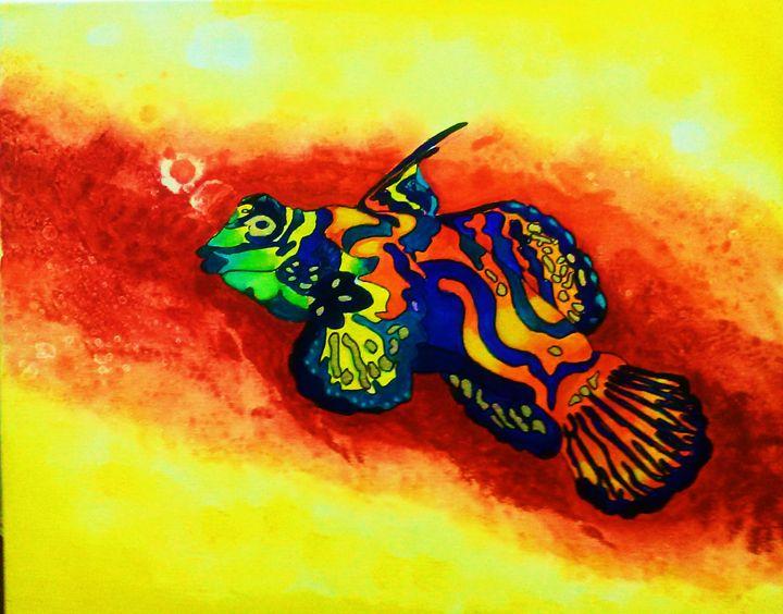 Mandarin Fish - warm waters