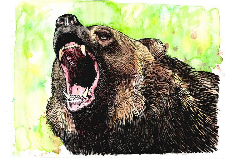 Bear - Franco Zanichelli