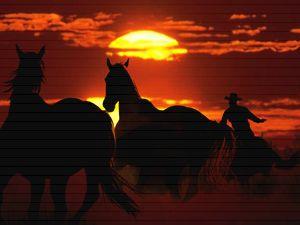 Cowboy ith wild horses