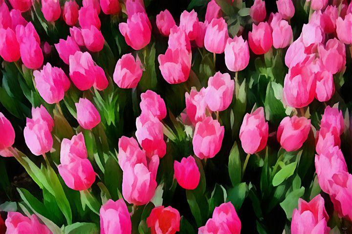 """Beyond Crowded Tulips"" - Bigan Fanli"