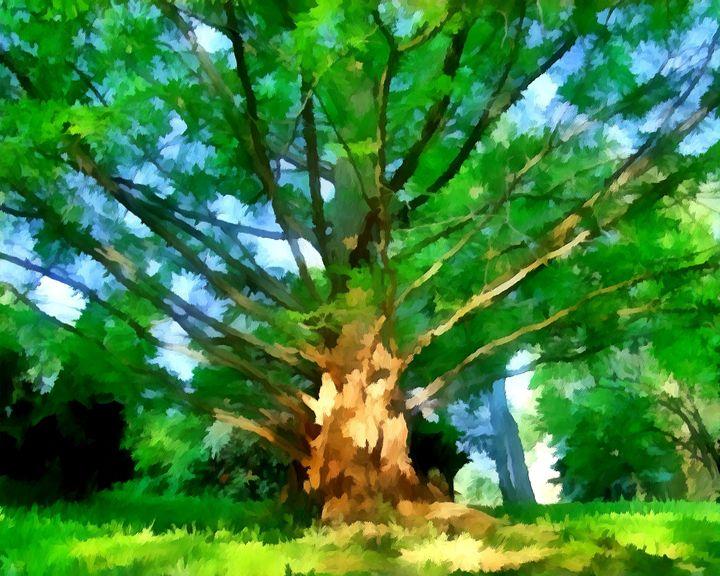 """""""Beyond Old Oak Tree"""" - Bigan Fanli"""