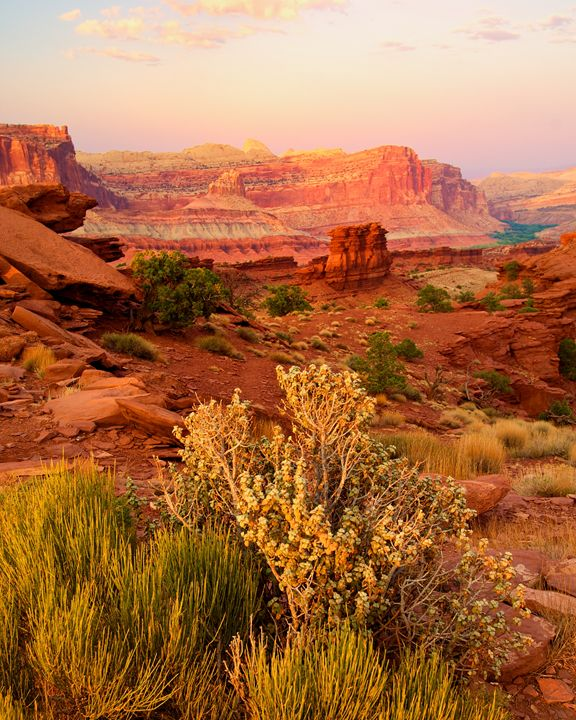 Capitol Reef Glow - Roy Breslawski Nature Photography