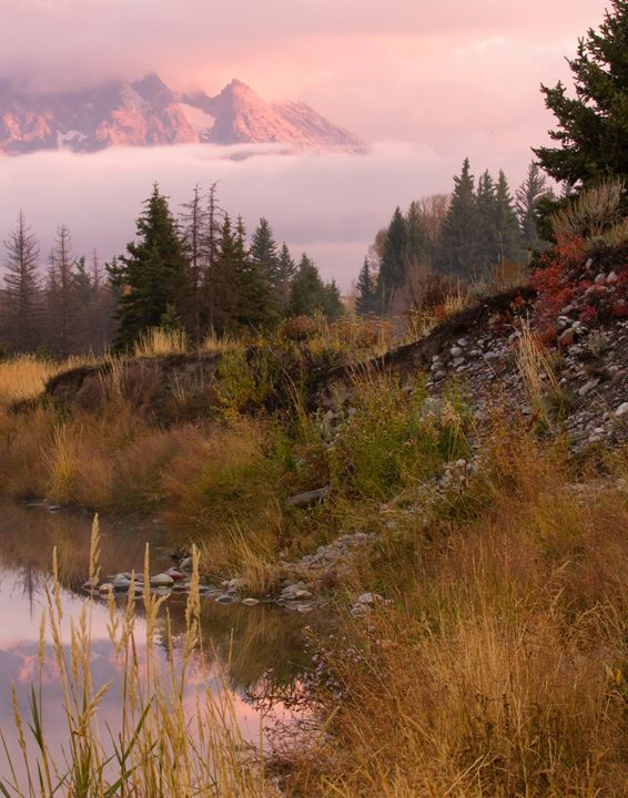 Scwabacher Landing - Roy Breslawski Nature Photography