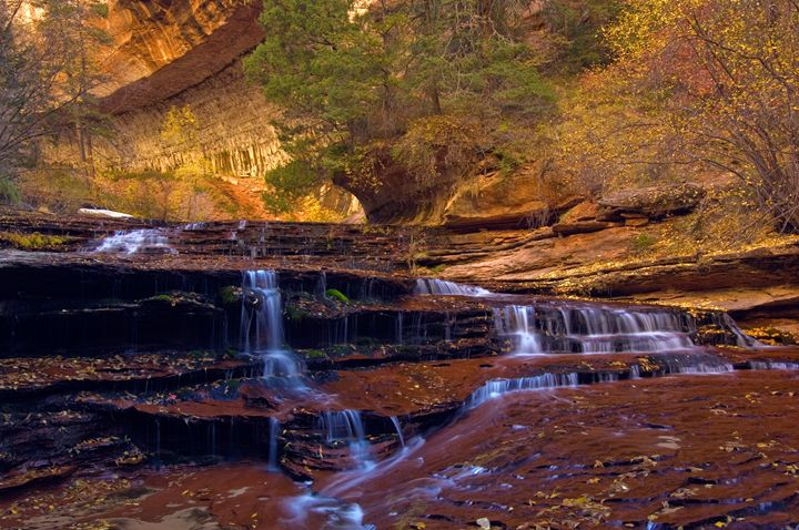 Zion Cascades - Roy Breslawski Nature Photography