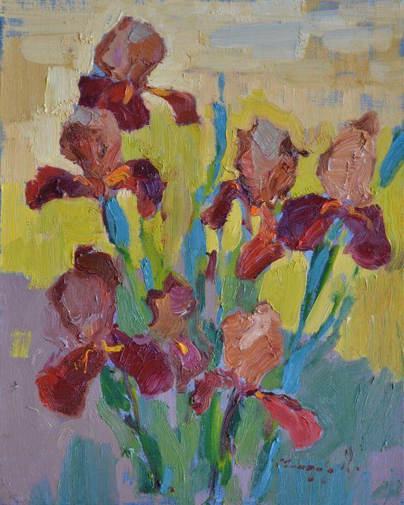 Irises in the garden - Shandor Alexander