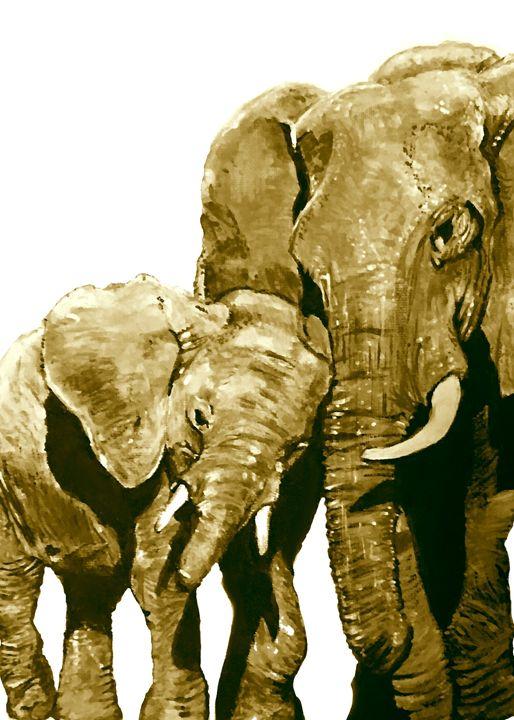 Elephant mud bath - Ryan Ireland