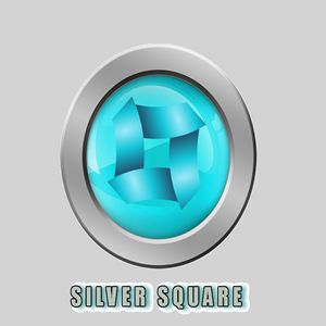 Silver Square Logo Design Template