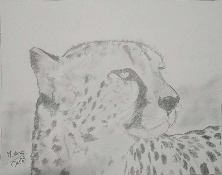 Cheetah face - Murtaza's Art Gallery