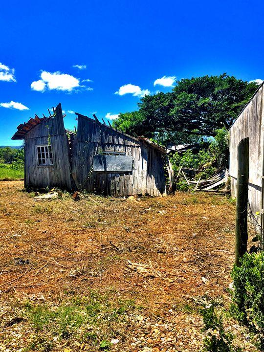 Florianópolis-62 - djronce