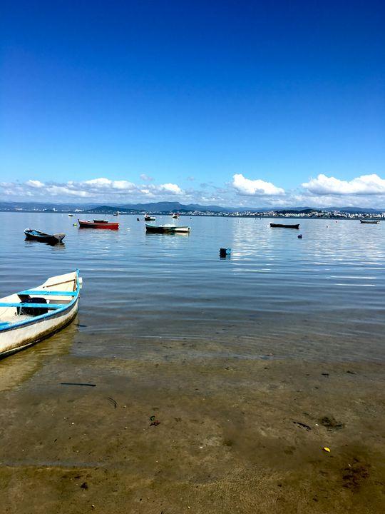 Florianópolis-75 - djronce