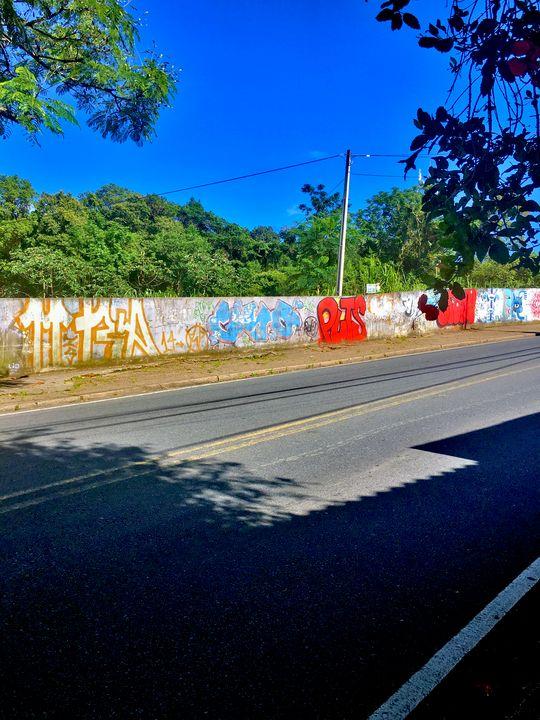 Florianópolis-163 - djronce