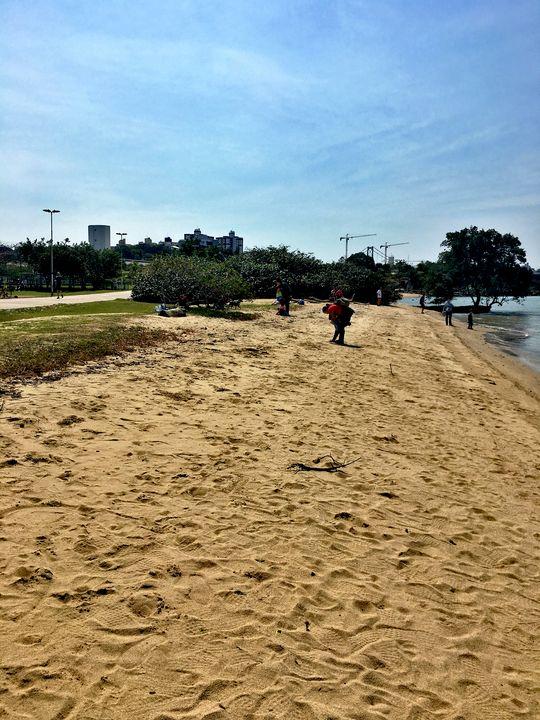 Florianópolis-219 - djronce