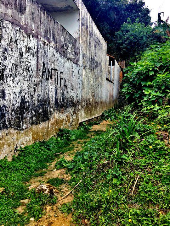 Florianópolis-224 - djronce