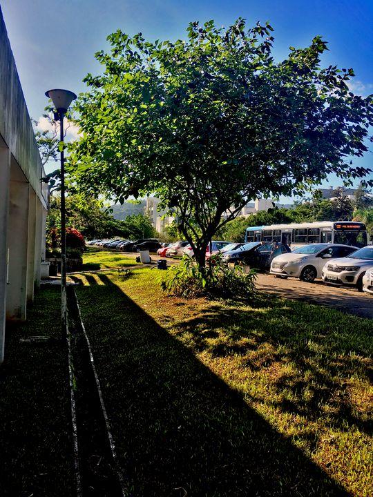 Florianópolis-281 - djronce