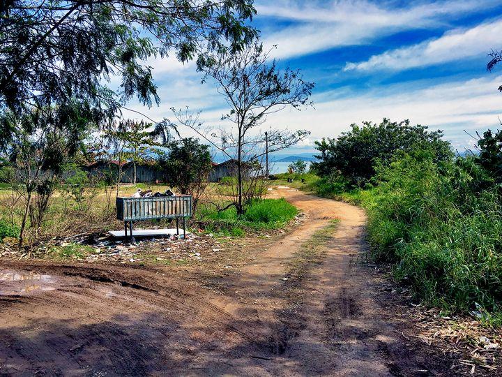 Florianópolis-54 - djronce
