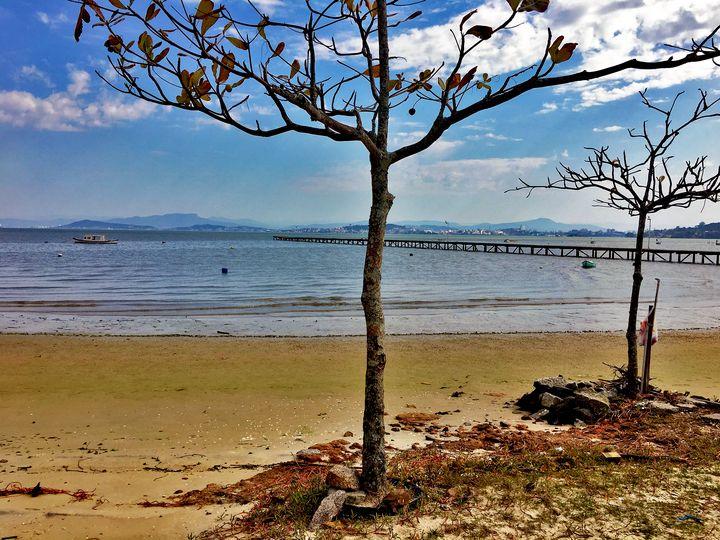 Florianópolis-55 - djronce