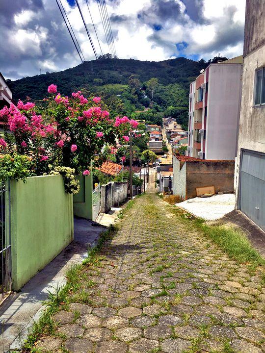 Florianópolis-56 - djronce