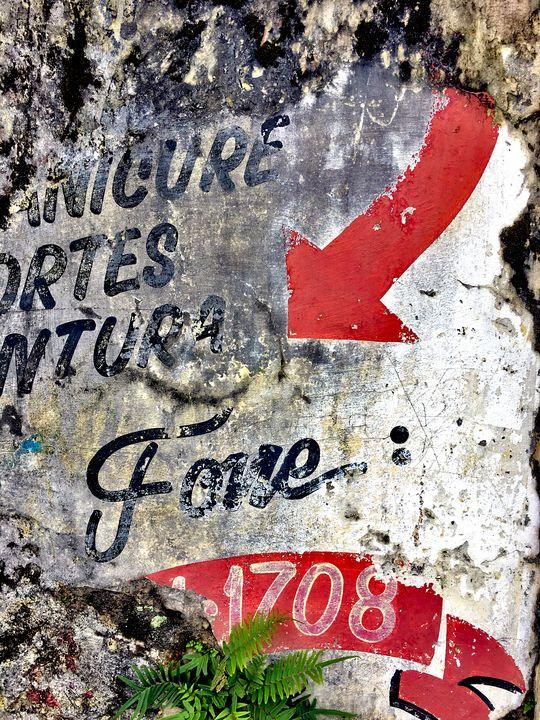 Florianópolis-57 - djronce