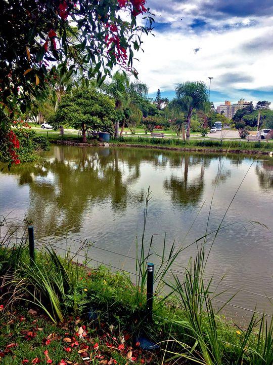 Florianópolis-61 - djronce
