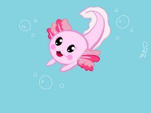 Baby axolotl