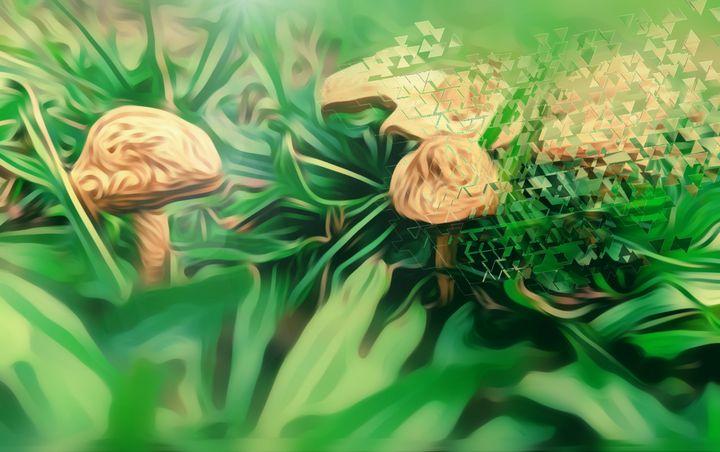 mushrooms! - ArtOfSprague