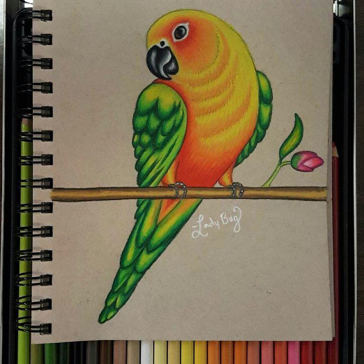 Parrot - Ladybug Delatorre