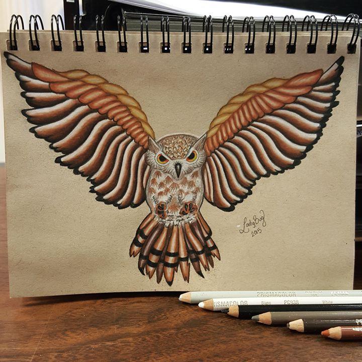 Flying Owl - Ladybug Delatorre