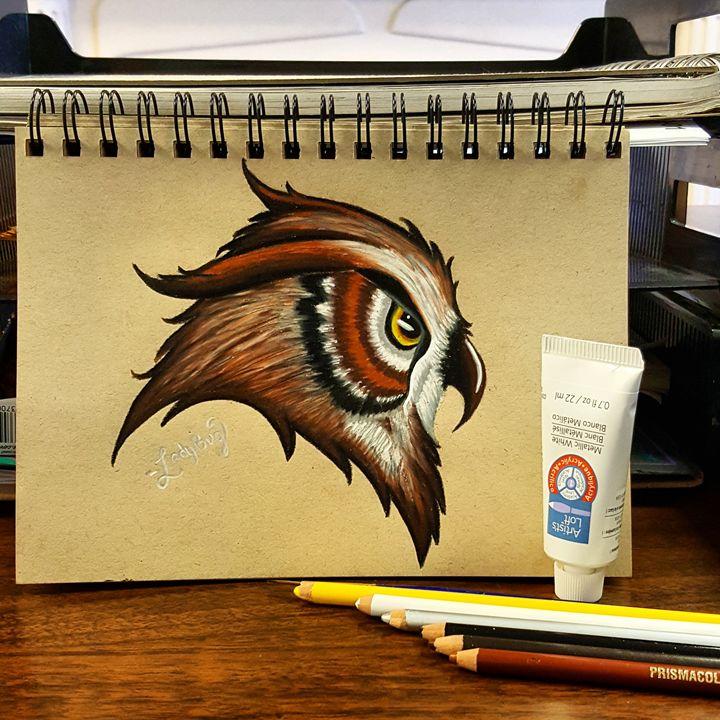 Owl - Ladybug Delatorre