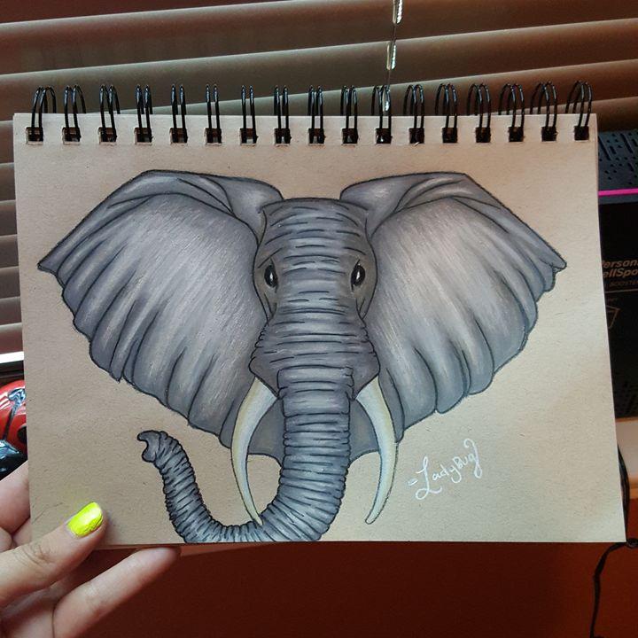 Elefante - Ladybug Delatorre