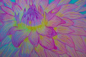 Blue, Pink, Purple, Yellow Flower