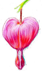 Bleeding Heart Flower Realistic Art