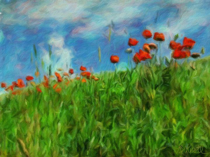 Bioca Poppies a@ - MyArt: Brenda Knoll