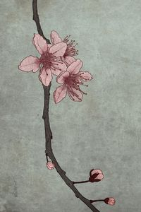 Spring Delight III