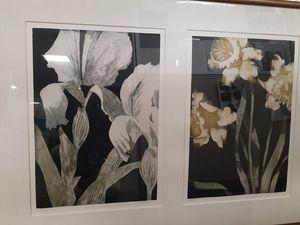 Iris and Golden Daffodils
