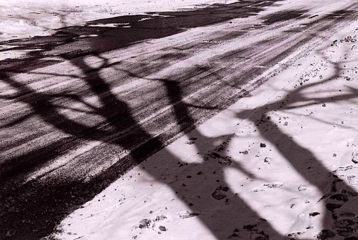 Shadow and Snow - Cass