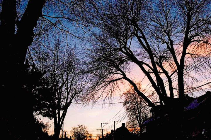 Sunset in the Neighborhood - Cass
