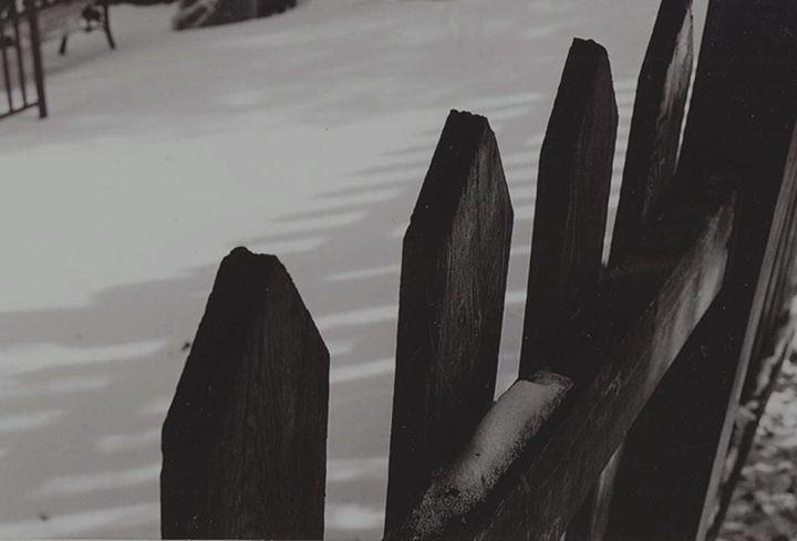 Fence - Cass