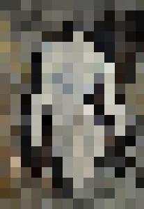 Nude 5721 - Pol Ledent's paintings