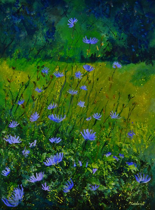 Blue corn flowers 68 - Pol Ledent's paintings
