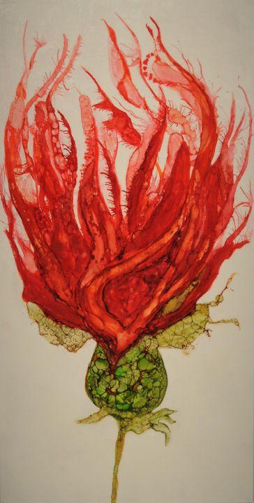 The bursting red seed - Jean Davis