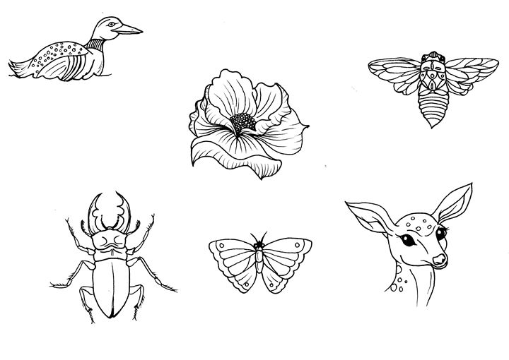Nature Designs Tattoo Flash - Milk Thistle Designs
