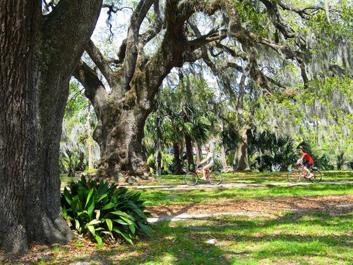 Biking in the Park - Olden Oaks
