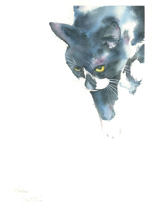 Shadow - Watercolors by Susi