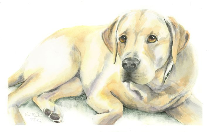 Yellow Lab - Watercolors by Susi