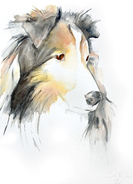Mac the Sheltie - Watercolors by Susi