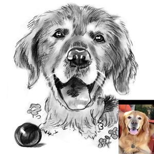 Hand Drawn Custom Pet Portrait B&W
