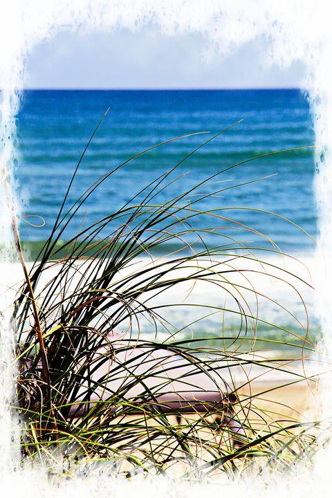 Outer Banks Beach Grass 001 - Patti Needham