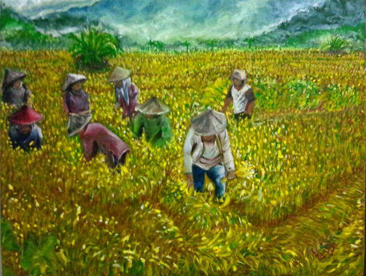 harvest wheat - areesign
